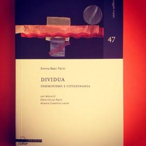 dividua-1-300x300