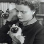 Morante e gatti